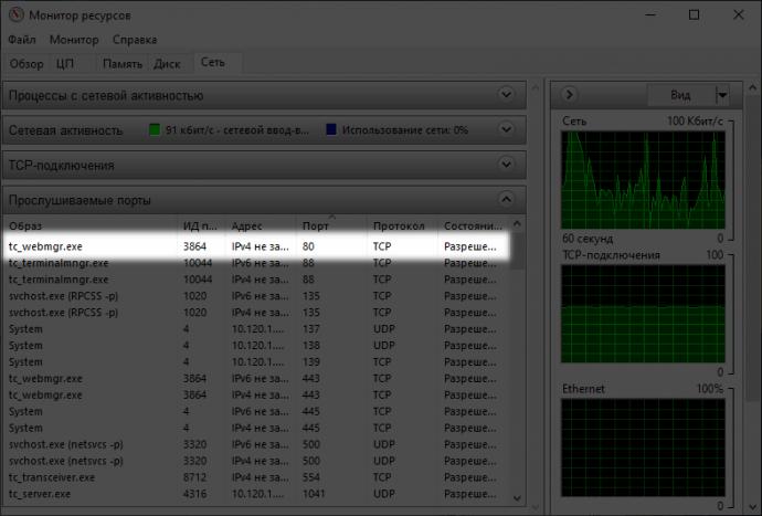 TrueConf web service using port